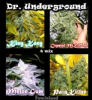 Dr Underground Killer Mix Fem 8 Seeds